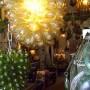 grape lights 012